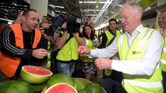 mal turn water melon 1.jpg